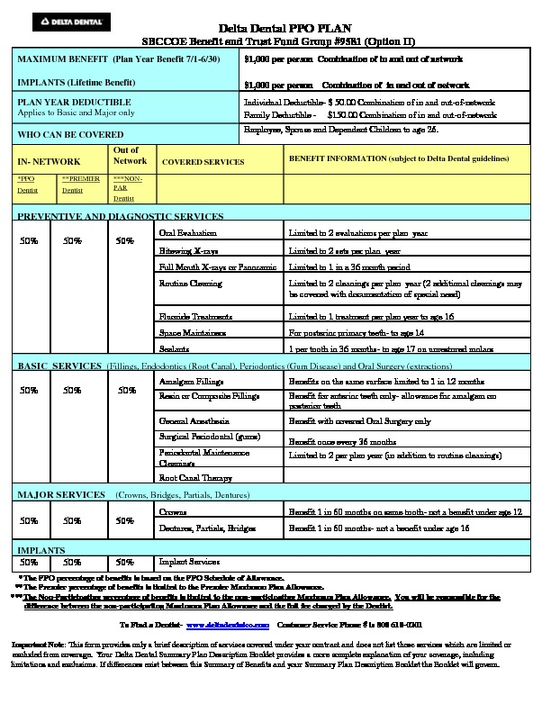 Delta Option II Flyer 2018-19 PDF