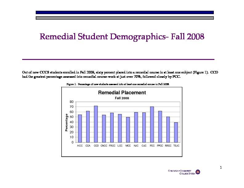 2008 Remedial Student Demographics PDF