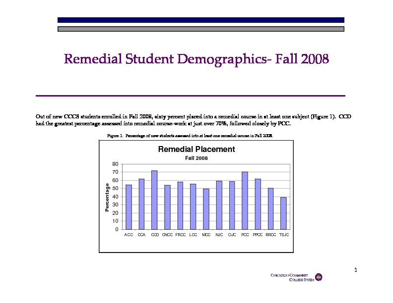 2008 Remedial Student Demographics PDF